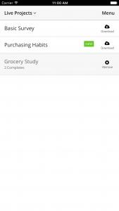 Decipher CAPI offline survey app project list.