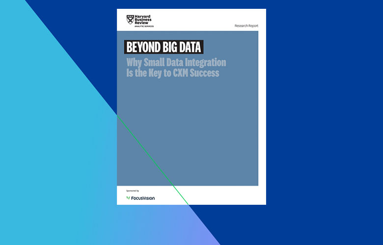 Beyond Big Data: Why Small Data Integration Is the Key to CXM Success