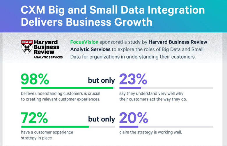 CXM Big Small Data Integration Delivers Business Growth